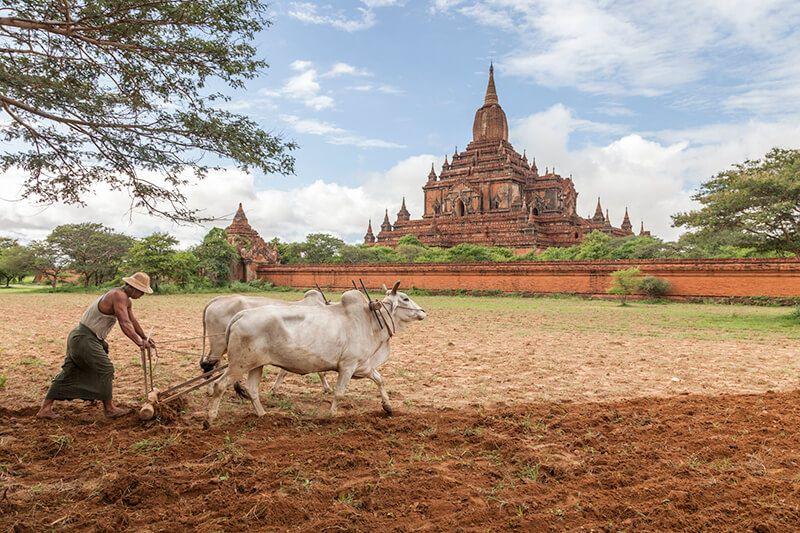 Luxury Cruise Experiences in Myanmar